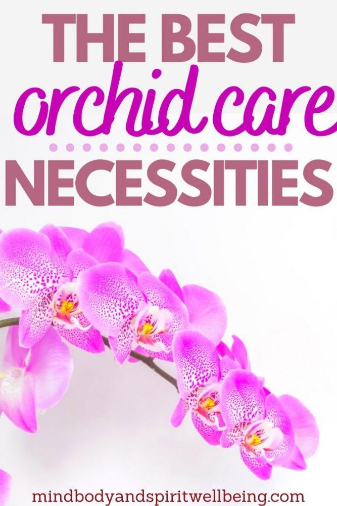 orchid planting tools, Phalaenopsis care tools